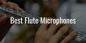 Flute microphones