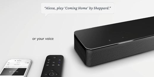 Voice recognition feature